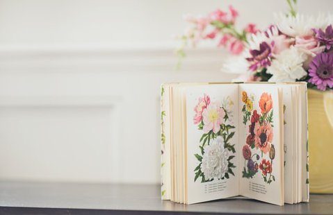 Botanica e giardinaggio id_800